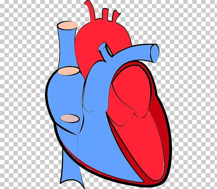Heart Failure Hemodynamics Cardiology Artery PNG, Clipart, Area.