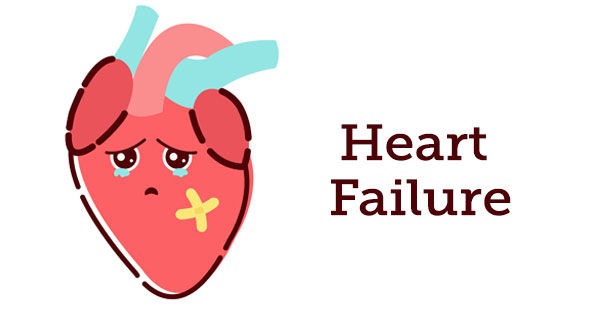 Congestive Heart Failure, Mitral Valve Disease & AFib.