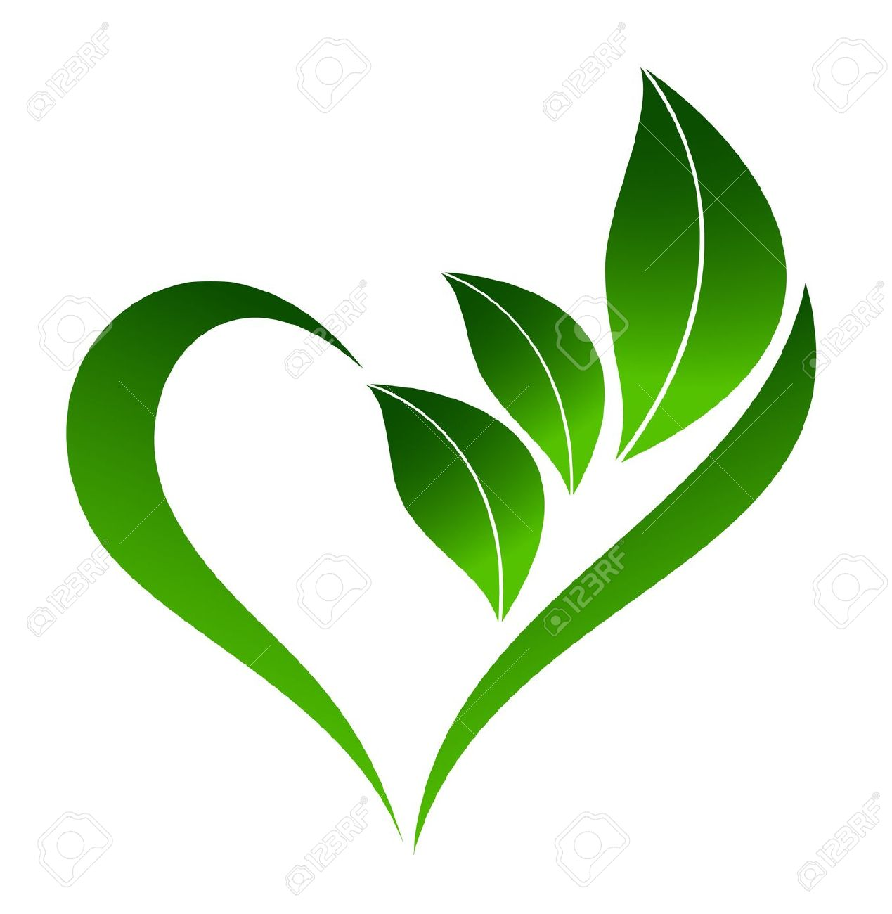 Heart leaf clipart.