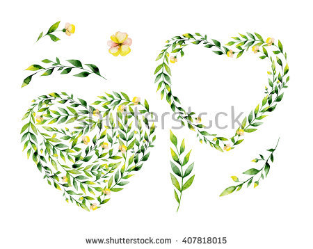 Green Heart Plant Yellow Stock Photos, Royalty.
