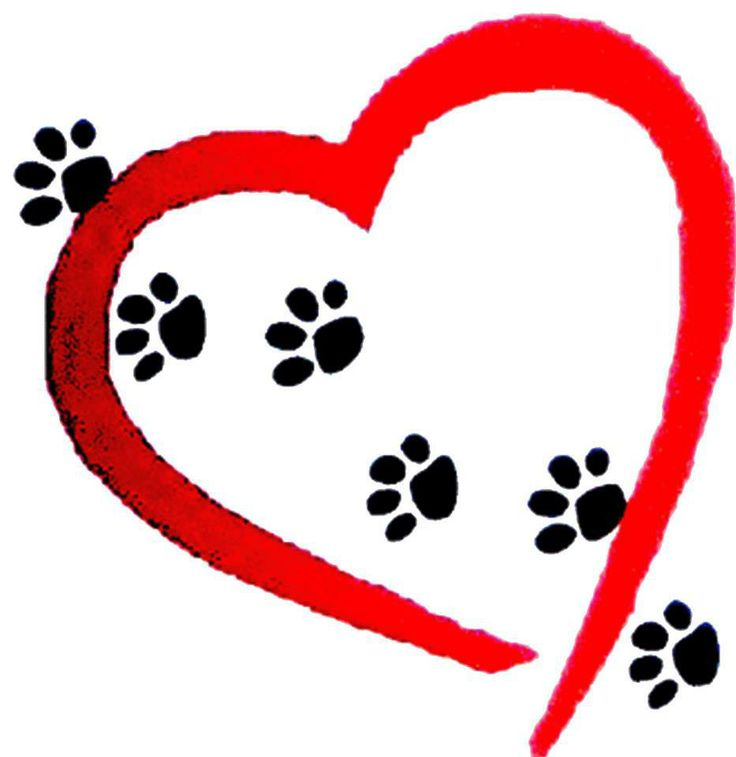 111 best images about ●Paw Prints On My Heart● on Pinterest.