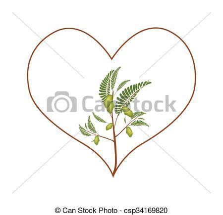 Heart pea clipart #20