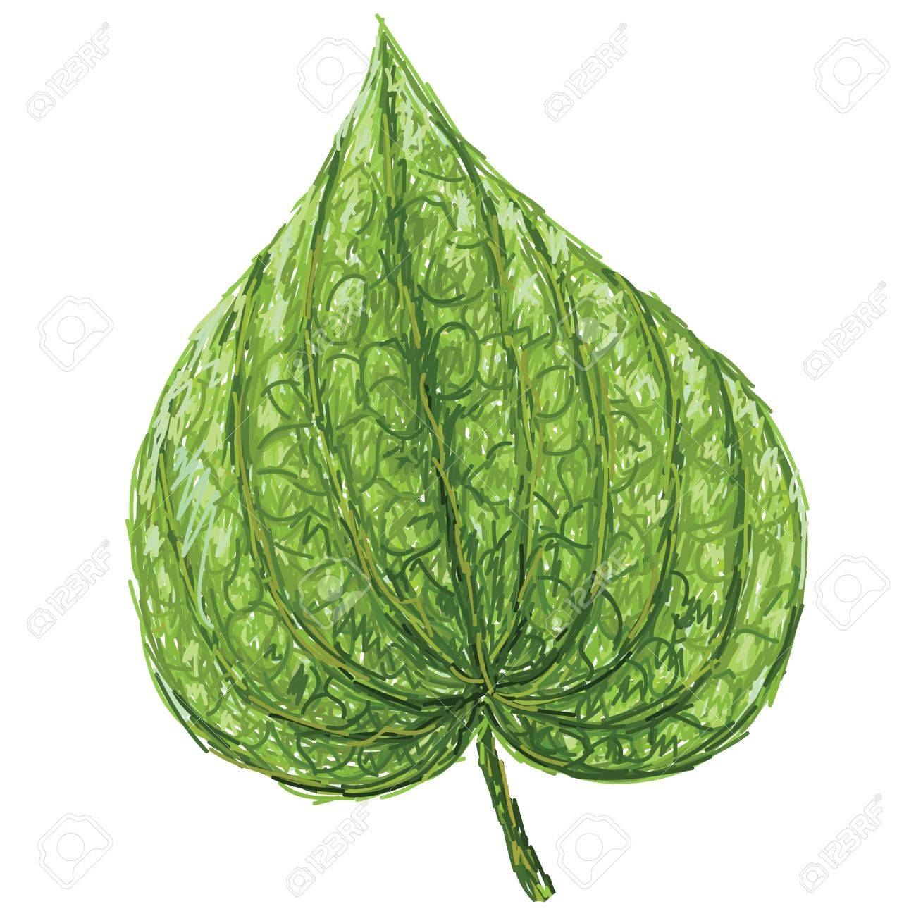 unique style illustration of betel or piper betle heart.