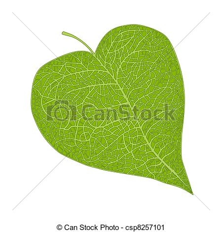Leaf Illustrations and Clipart. 664,086 Leaf royalty free.