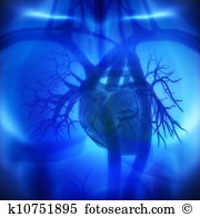 Heart surgery Clip Art and Stock Illustrations. 1,924 heart.