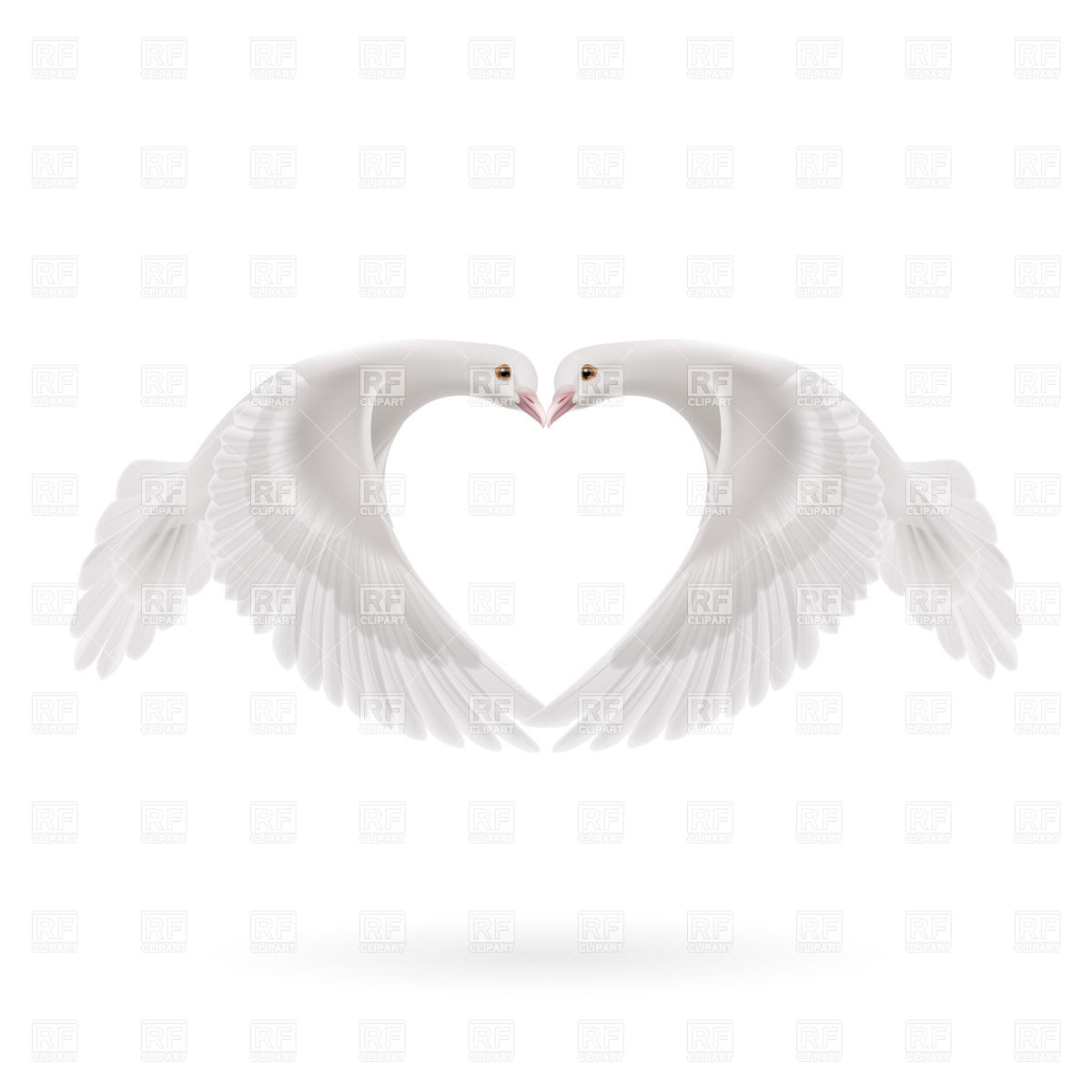 Doves making heart silhouette with wings Vector Image #35829.