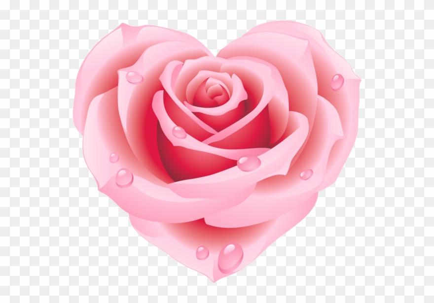 Girl Sketch, Rose Clipart, Vintage Heart, Pink Love,.