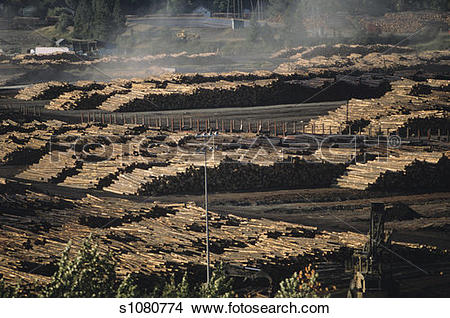 Stock Photo of Watering log yard to reduce heat build.