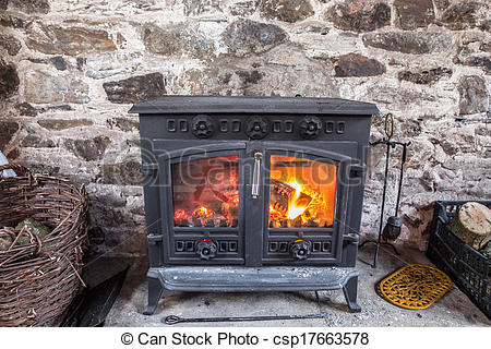 Picture of Cast iron stove burning wood logs against a robust.