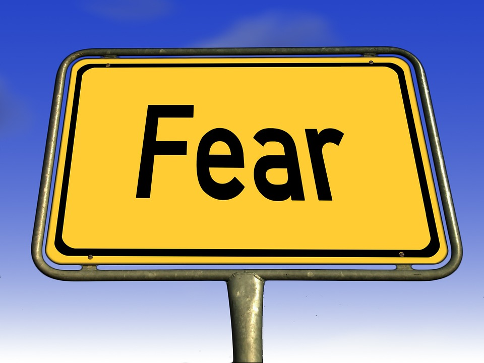 Free illustration: Fear, Town Sign, Road Sign, Shield.