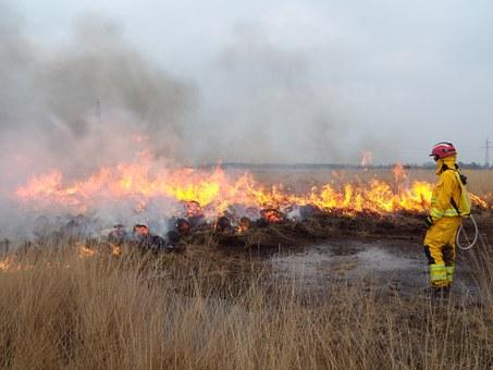 Fire, Department.