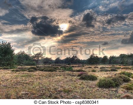 Stock Photography of HDR image of open heathland with forest.