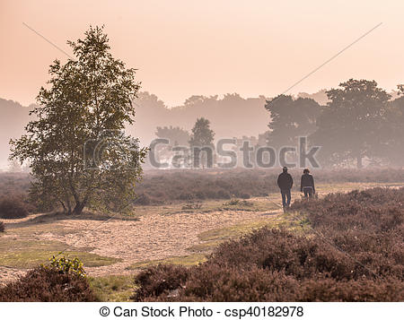Picture of Couple strolling along path through heathland on a.