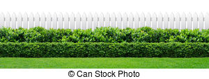 Hedge Clip Art and Stock Illustrations. 1,768 Hedge EPS.
