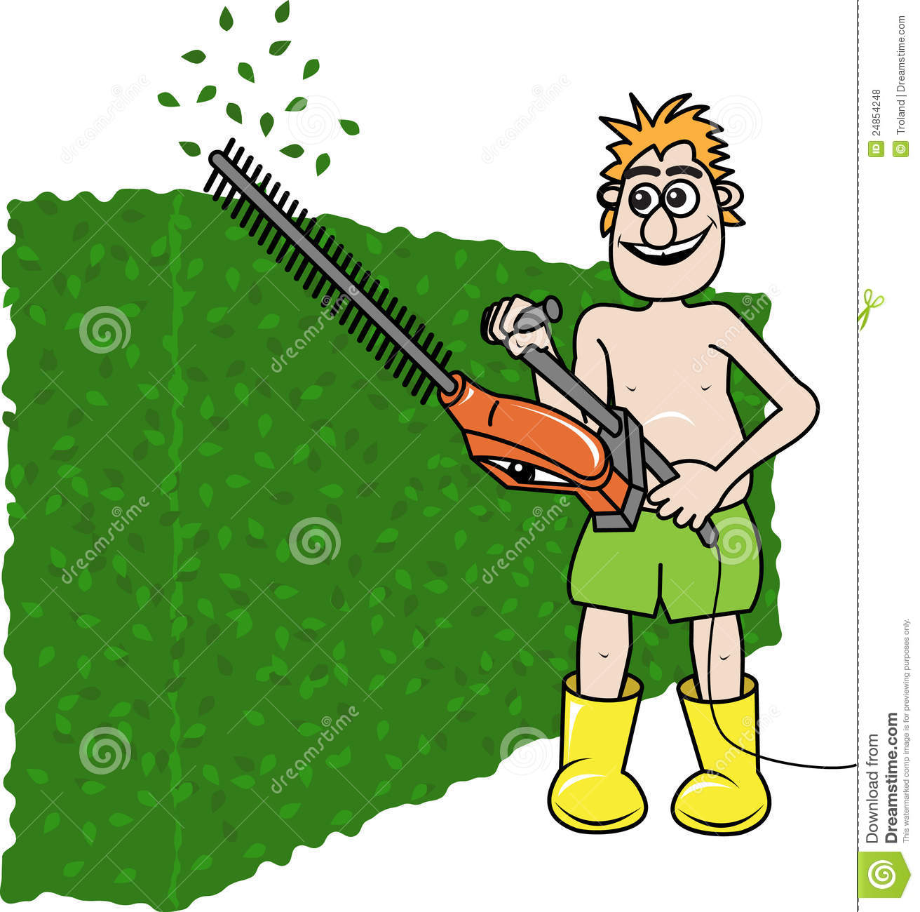 Hedge Clipart.