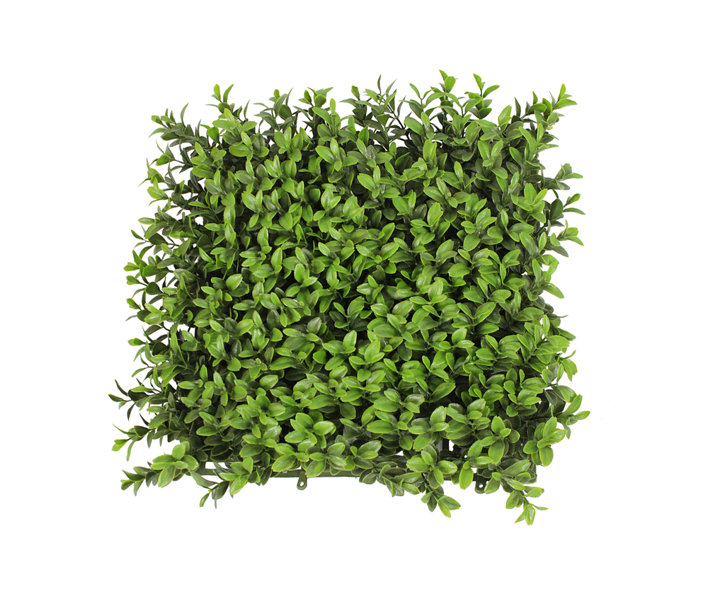 Hedges Transparent PNG Pictures.