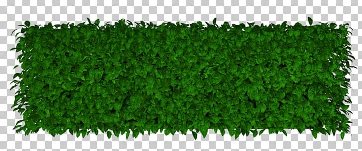 Lawn Artificial Turf Garden Hedge PNG, Clipart, Artificial Turf.