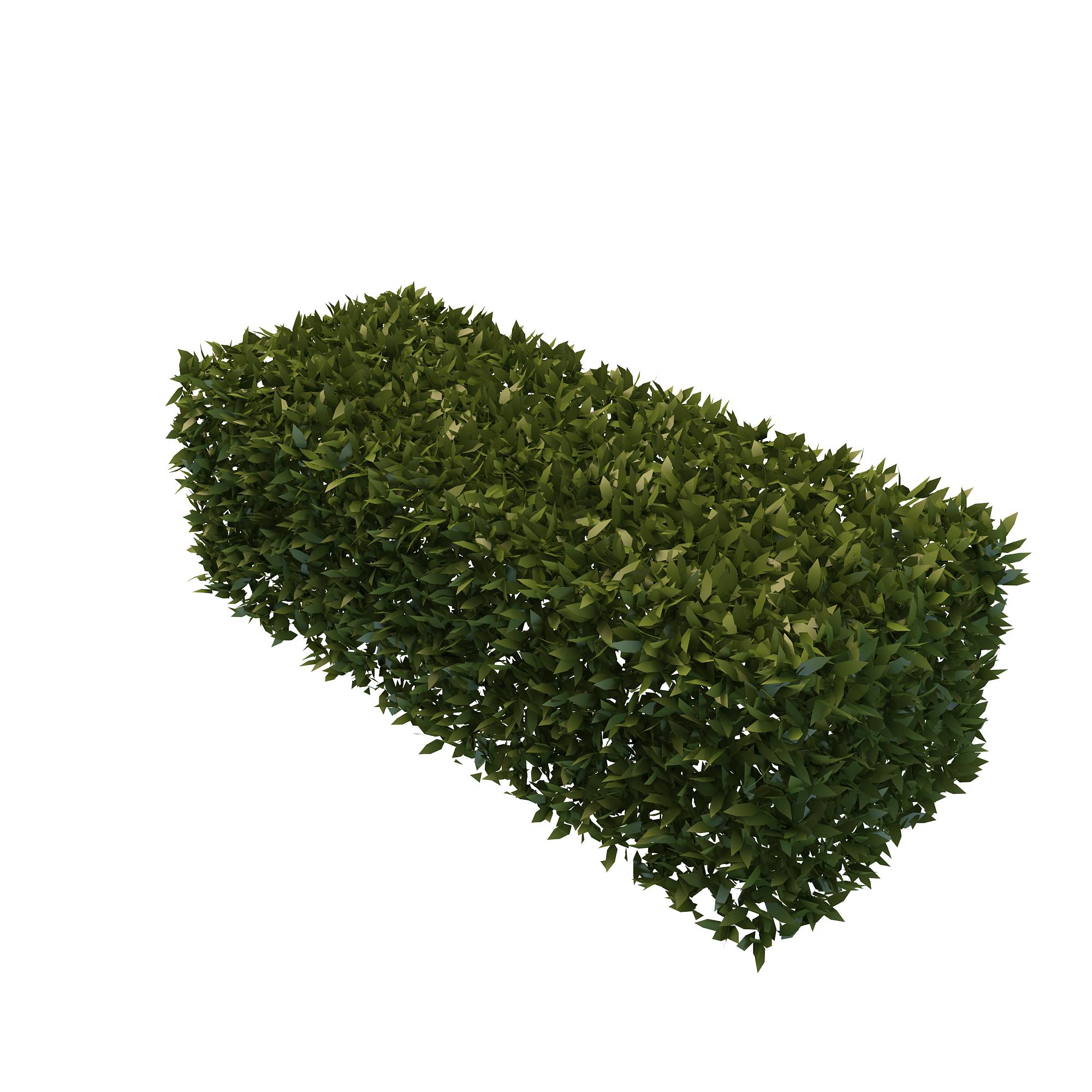 Best Free Hedges Png Image #32440.