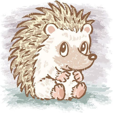Image result for hedgehog clipart free.