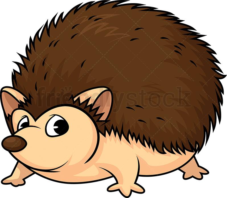 Wild Hedgehog.