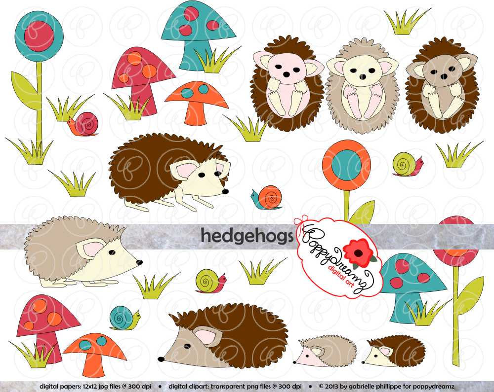 Hedgehog clipart.