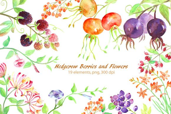 Watercolor Hedgerow Clipart.