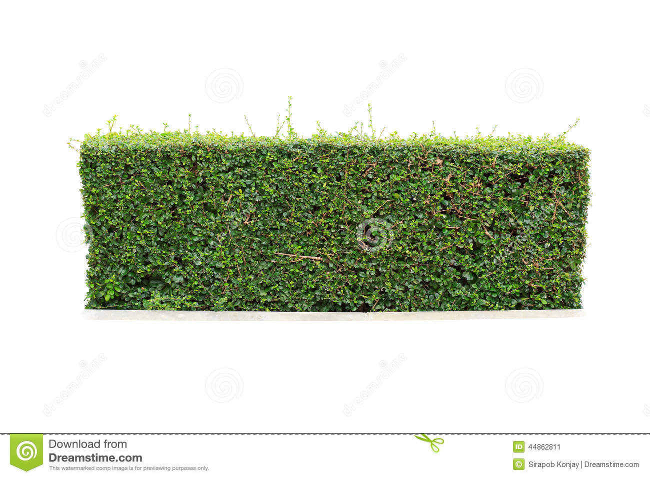 hedgerow clipart