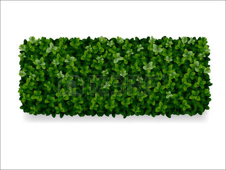 2,548 Hedges Stock Illustrations, Cliparts And Royalty Free Hedges.
