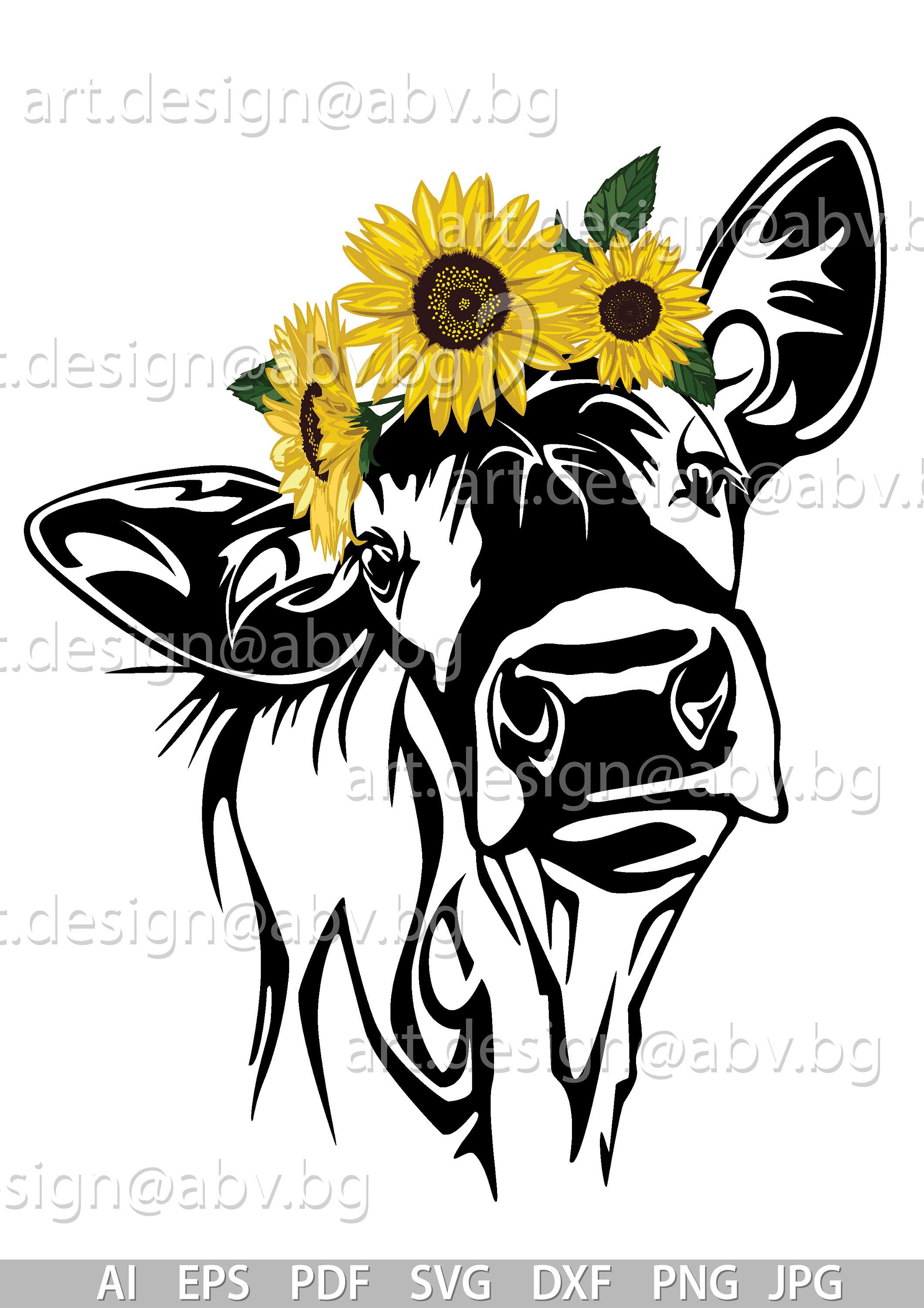 Vector COW with sunflowers, heifer, calf, head, AI, PNG, eps.