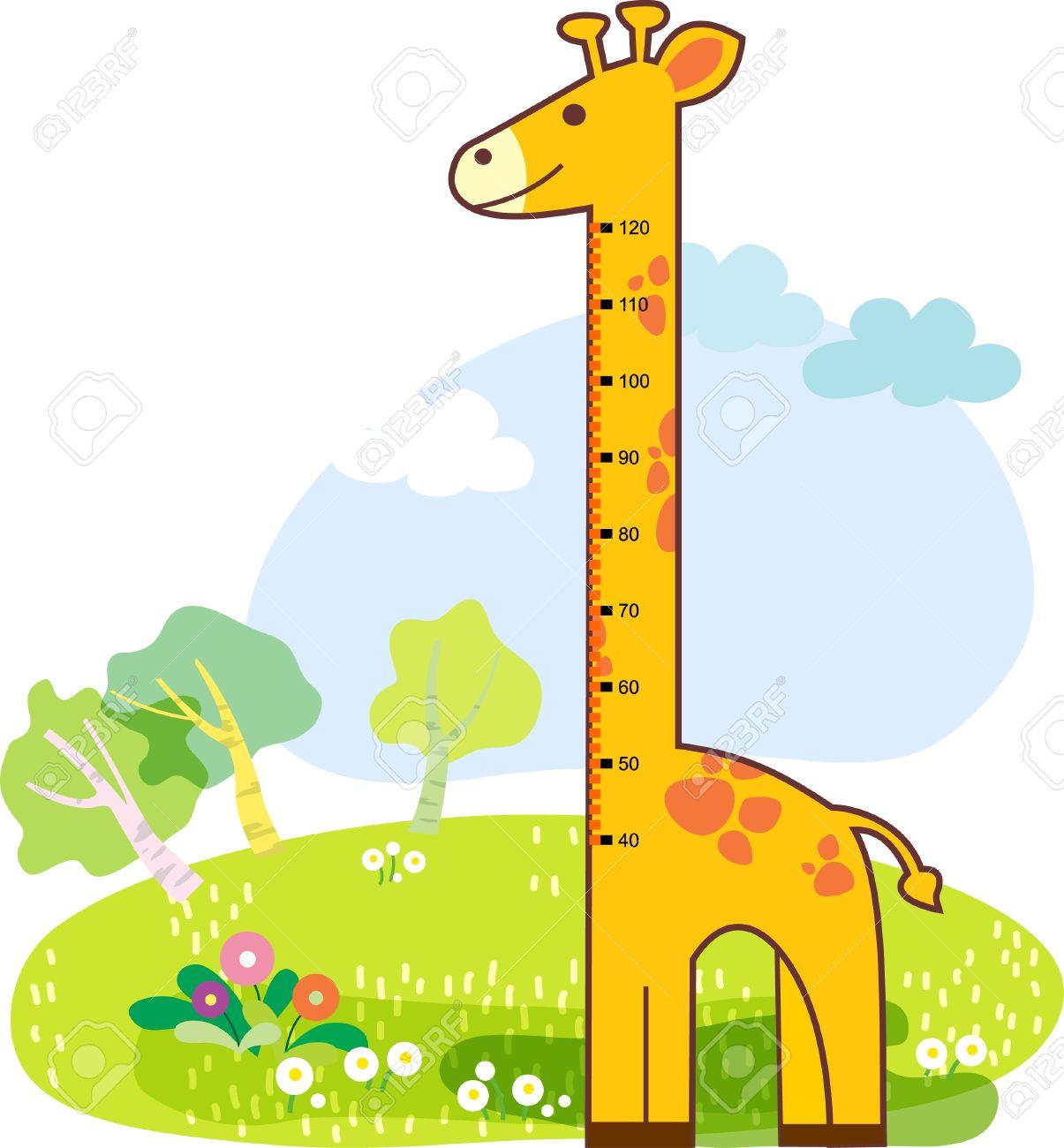 Clip Art Height Growth.