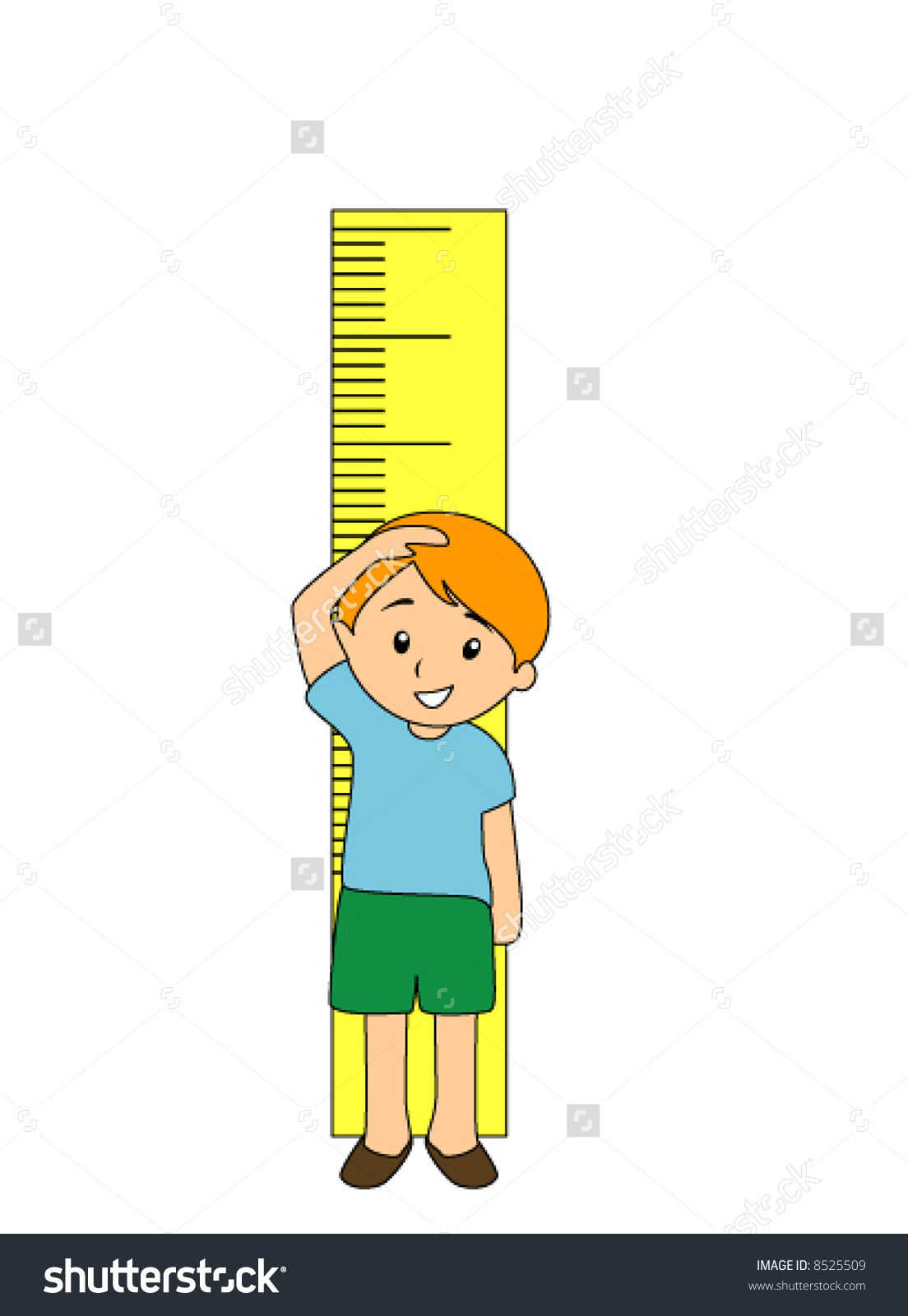 Measuring height clipart.