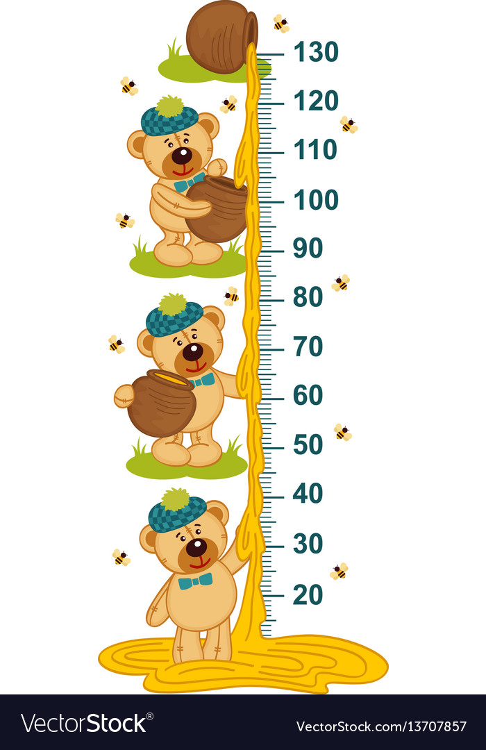 Teddy bear and honey height measure.
