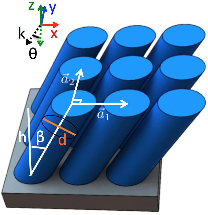 Schematic of the tilted silicon nanowire array structure. The.