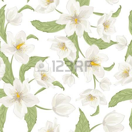 48 Hellebore Stock Vector Illustration And Royalty Free Hellebore.