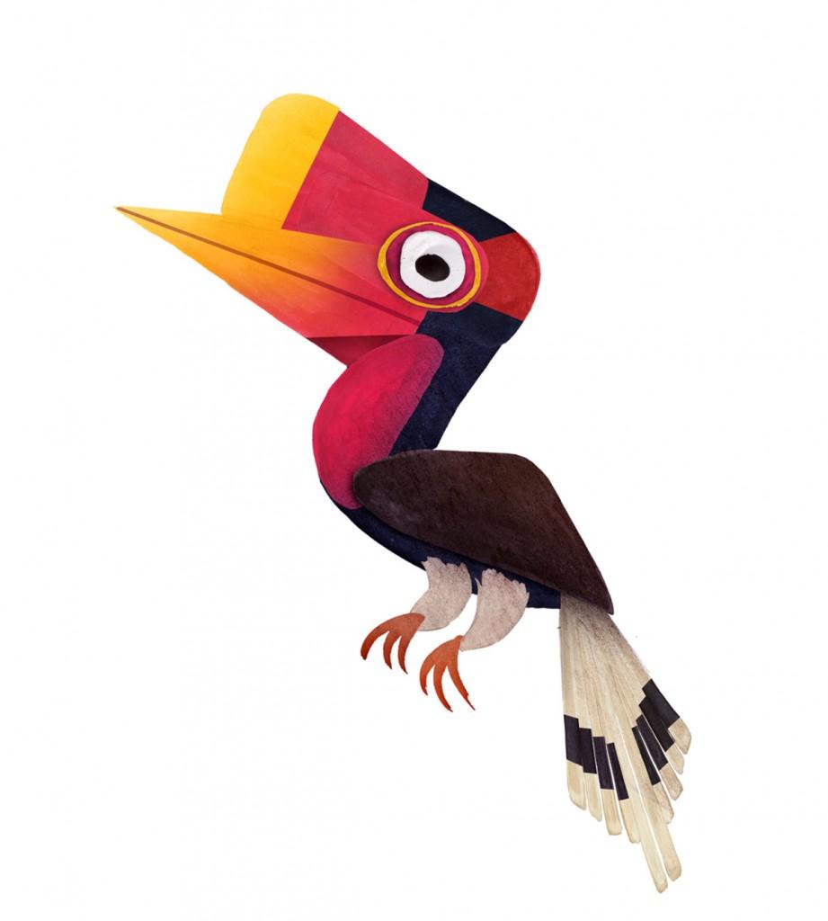Helmeted Hornbill.