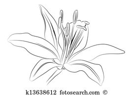 Hemerocallis Clipart Royalty Free. 13 hemerocallis clip art vector.