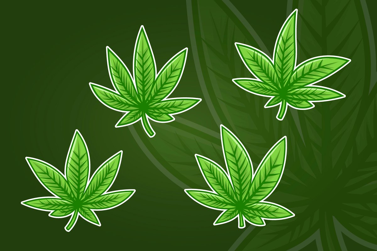 Vintage Hemp Leaf Clipart Collection ~ Graphic Objects.