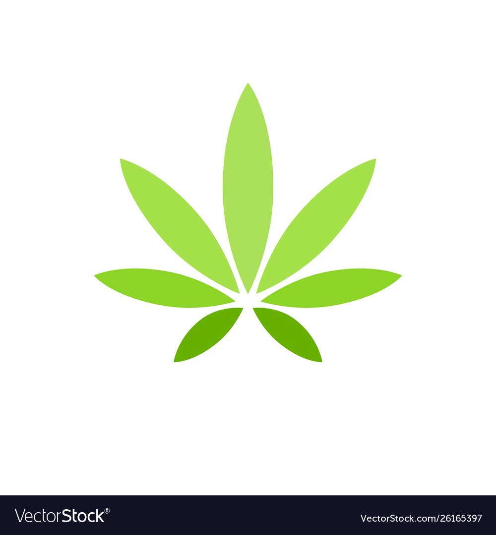 Cannabis leaf on white background logo illegal.