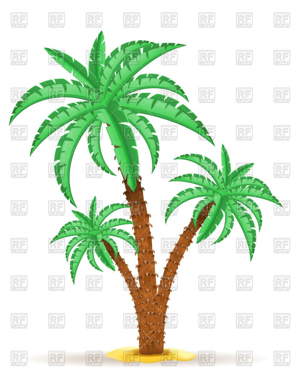 Palm tree Vector Image #111583.