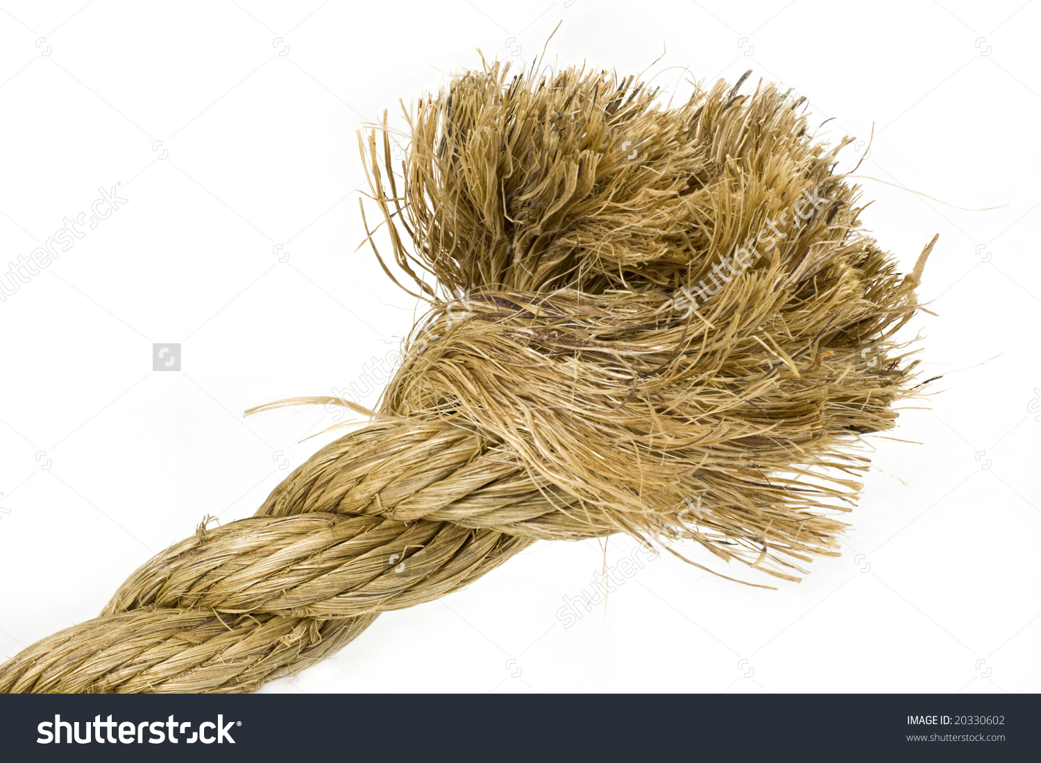 Badly Frayed End Natural Hemp Rope Stock Photo 20330602.
