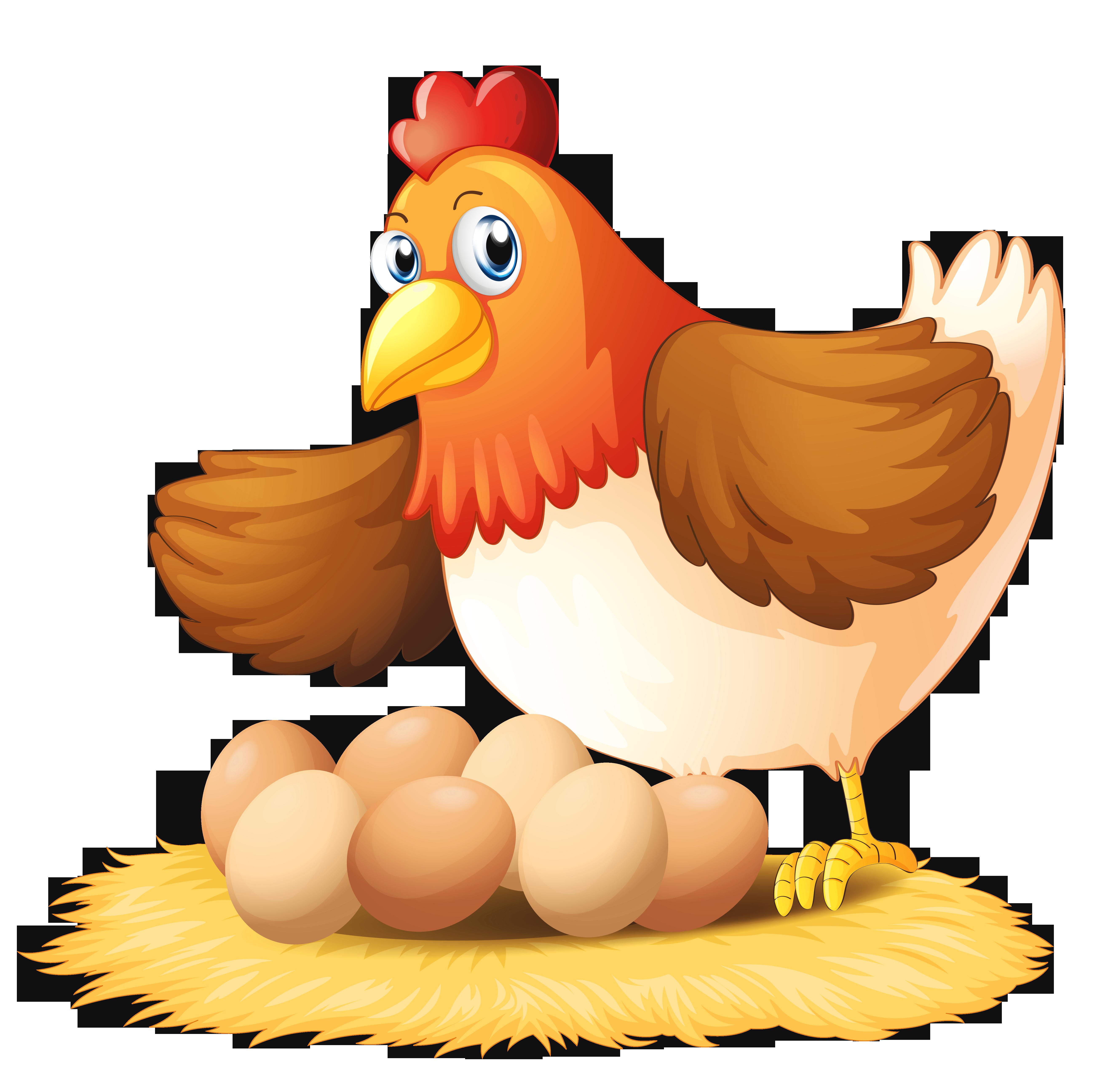 The hen clipart #8
