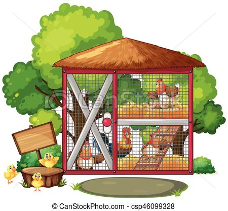 Chickens in big coop.