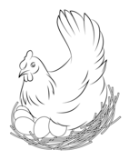 Chicken coloring pages.