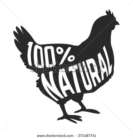 Chicken Nest Stock Images, Royalty.