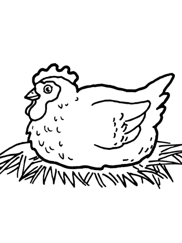 Hen on Nest coloring page.