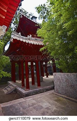 Stock Photograph of Tree near a pavilion, Songyang Academy.