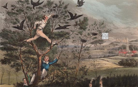 1800s Antique British Sport Print Henry Alken Art by NGArtPrints.