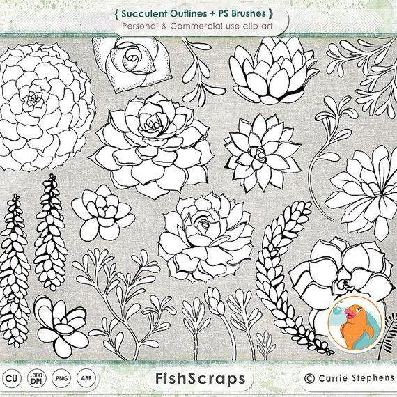 1000+ images about succulent paint on Pinterest.