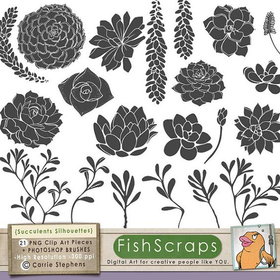 Succulent ClipArt Silhouettes + Photoshop Brush, Hens & Chicks.