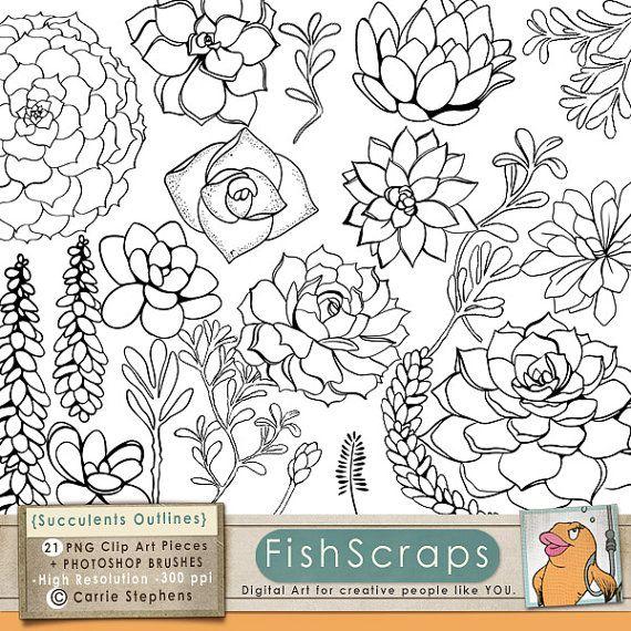 Succulent Line Art, Printable ClipArt Outline, Succulent Flower.